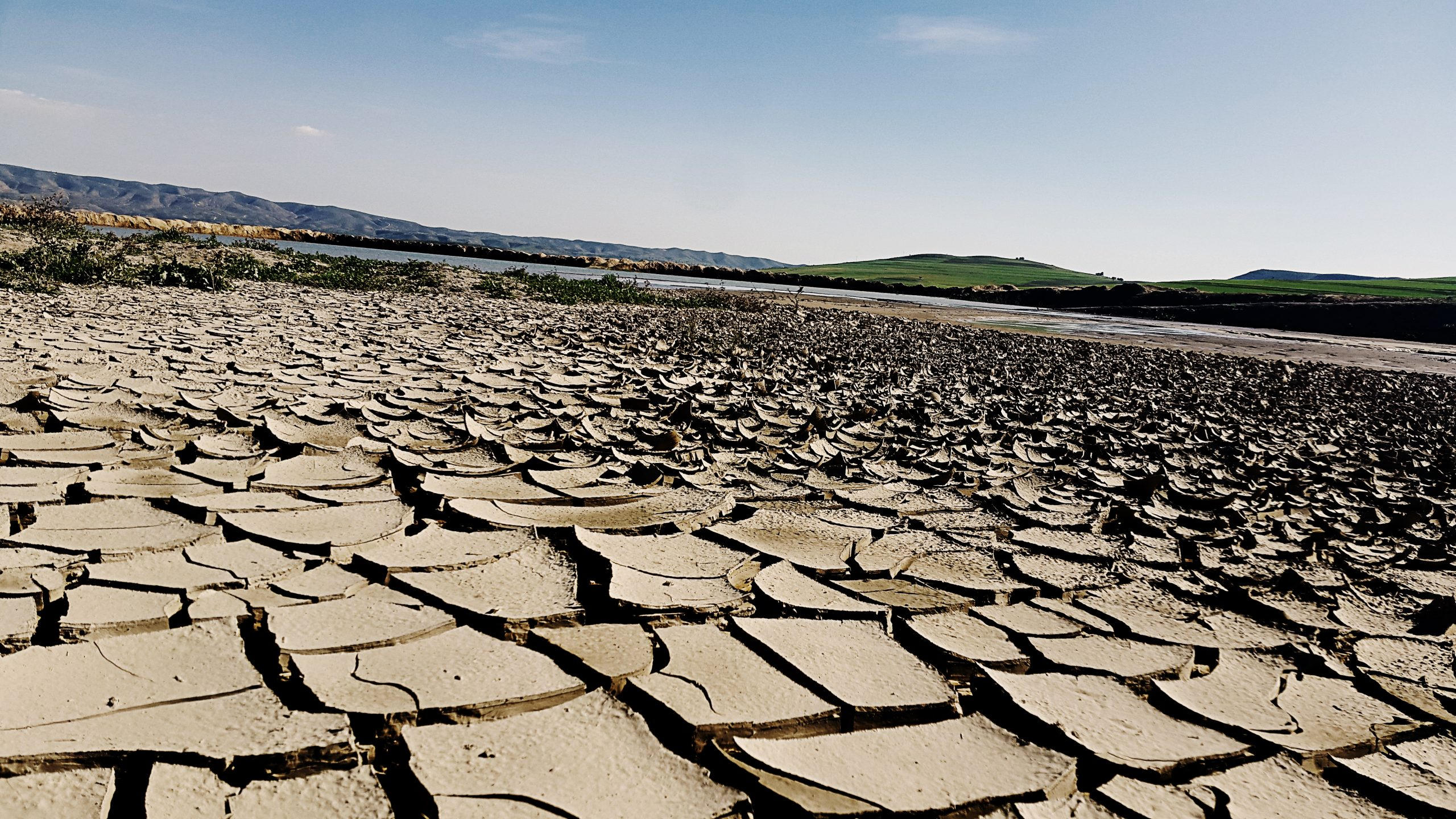 Expanse of dry, cracked mud